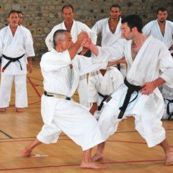 Bunkai- bài quyền trong karate