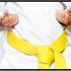 Ý nghĩa của đai vàng trong Karate