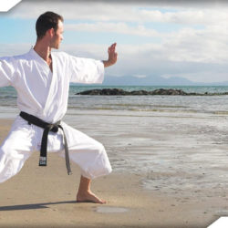 Ý nghĩa của đai nâu trong Karate