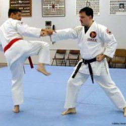 Kỹ thuật chặn và phản đòn của Karate