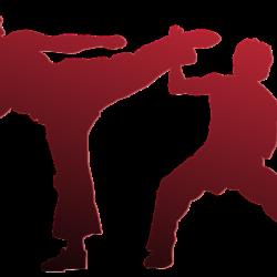 Ý nghĩa của Đai xanh da trời đậm trong Karate