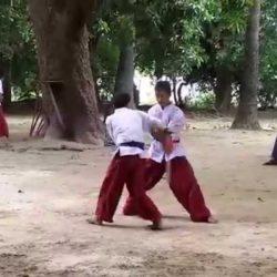 Sơ lược về môn võ Thaing của Myanmar