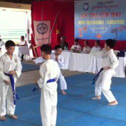 Ý nghĩa của Đai xanh da trời trong Karate