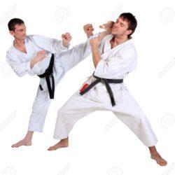 Kỹ thuật đánh Karate căn bản