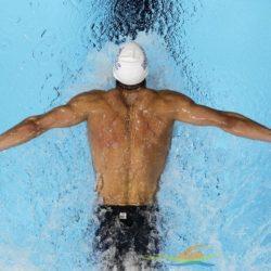6 kỹ thuật bơi bướm cần lưu ý