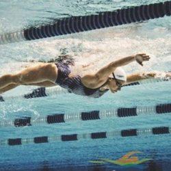 Học bơi bướm - Tập uốn sóng bướm