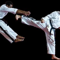 Cú đấm thép từ võ Karate