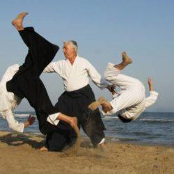 Những điều cần biết về võ Aikido