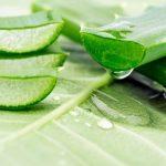 Cách trị nám da mặt an toàn tại nhà từ hoa quả thiên nhiên