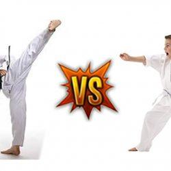 Nên học Karate hay Taekwondo – Môn võ nào sẽ là sự lựa chọn tốt nhất