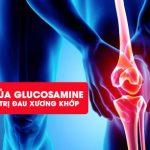Glucosamine là gì? Vai trò của Glucosamine trong điều trị thoái hóa xương khớp