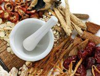 Một số bài thuốc về Sâm Ngọc Linh có tác dụng chữa bệnh
