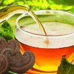 Tác dụng và cách dùng của một số loại trà linh chi