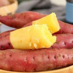 Ăn khoai lang có tốt không? Ai không nên ăn khoai lang